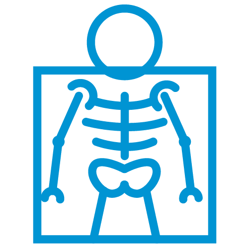 HLS ICONS X Ray What Is Your Field of Work?